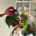 soinduo-décoration (4)
